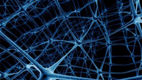 Autismo e iper-connessione neurale
