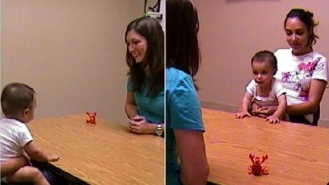 Autismo e diagnosi precoce, lo sguardo