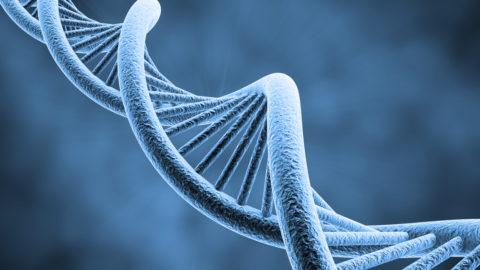 Rischio di autismo dipende al 52% da varianti genetiche [STUDIO]