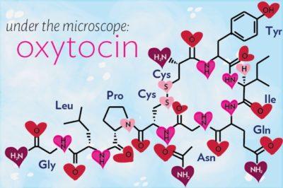 L'autismo non è causato da una mancanza di ossitocina