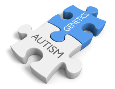 Genetica ed evoluzione cerebrale nell'autismo